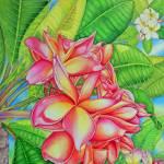 """""""Plumeria Garden"""" by joeyartist"""