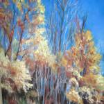"""""""Autumn Trees"""" by clarejohns"""