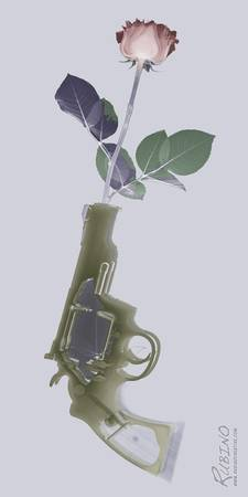 Hand Gun and Flower X-Ray Series 1