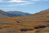 Mount Bierstadt Trailhead in Autumn