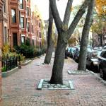 """""""South End sidewalk"""" by csbrown81"""