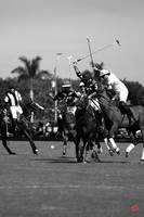 Facundo Pieres 10 goal Polo Player