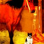 """Horse and dog at the stables 1"" by bandtdigitaldesigns"