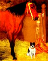 Horse and dog at the stables 1