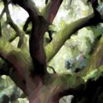 """Perfect Climbing Tree - Digital Art"" by Groecar"