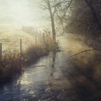 Misty River Art Prints & Posters by Audran Gosling