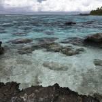 """Bora Bora Tidepool"" by artifex"