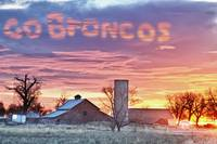 Go Broncos Colorado Country