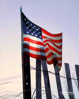 P14-18RA USA Flag Dune Fence