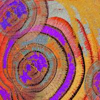 Tree Ring Abstract