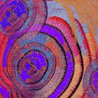Tree Ring Abstract 2