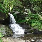 """Bushkill Falls 20120608_13a"" by Natureexploration"