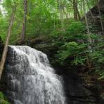 """Bushkill Falls 20120608_21a"" by Natureexploration"