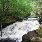 """Bushkill Falls 20120608_56a"" by Natureexploration"