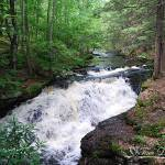 """Bushkill Falls 20120608_60a"" by Natureexploration"