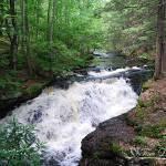 """Bushkill Falls 20120608_60a"" by Natureexploration"