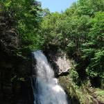 """Bushkill Falls 20120608_93a"" by Natureexploration"
