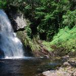 """Bushkill Falls 20120608_96a"" by Natureexploration"