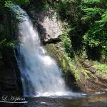 """Bushkill Falls 20120608_100a"" by Natureexploration"