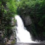"""Bushkill Falls 20120608_117a"" by Natureexploration"