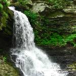 """Bushkill Falls 20120608_251a"" by Natureexploration"