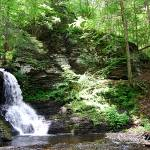 """Bushkill Falls 20120608_253a"" by Natureexploration"
