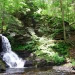 """Bushkill Falls 20120608_253a"" by Natureexploration"
