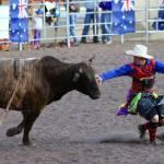 """""""Bull Rider"""