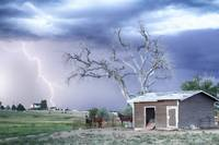 Country Horses Lightning Storm CO