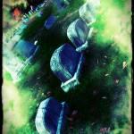 """""""Veiled"""" by eflynn"""