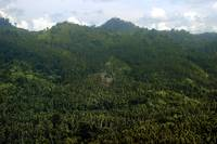 Manado' s Mountains and Forests