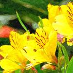 """Yellow flower"" by pixelez"