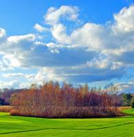 Country Golfcourse Landscape
