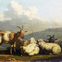 Karel Dujardin - Sheep and Goats Art Prints & Posters by ArtLoversOnline