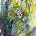 """Chamomile Flowers Expressive Watercolor"" by GinetteCallaway"