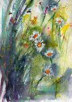 Chamomile Flowers Expressive Watercolor