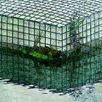 """P14-21RA Cranberry Bog Cage Filter"" by raBHA2014"