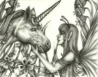 Fairy and Unicorn