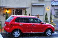 The First Snow of the Year in Chiba