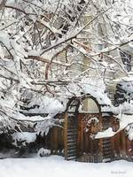 Garden Gate in Winter