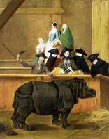 Pietro Longhi - Exhibition of a Rhinoceros at Veni