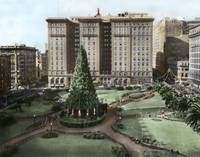 Union Square Christmas Tree • San Francisco c1920 by WorldWide Archive