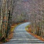 """Montgomery Mountain Road"" by DBenoit"