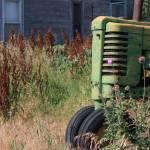 """Thistles & Tractor, Mason City, Nebraska"" by joelrichter"