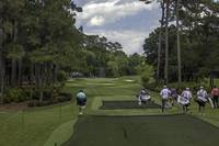 TPC Sawgrass Golf Course Hole 8 Photo 1