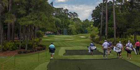 TPC Sawgrass Hole 8 Photo 1 Wide