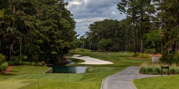 TPC Sawgrass Hole 10 Photo 1 Wide