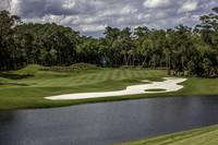 TPC Sawgrass Hole 12 Photo 1