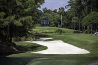 TPC Sawgrass Hole 10 Photo 2