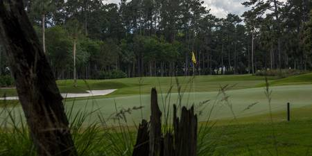 TPC Sawgrass Golf Course Hole 10 Photo 3 Wide